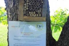 Информационната табела освен данни за проекта , съдържа и кратка информация за дивите и самотни пчели.