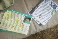 Подготвени са рекламни материали, които дават информация за пчелните хотели и цветните бомби